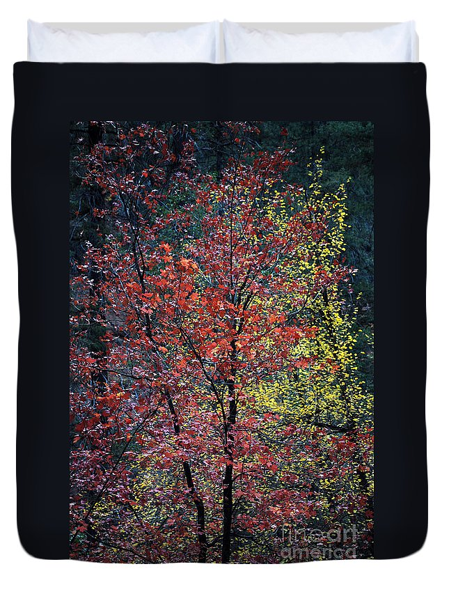 Landscape Duvet Cover featuring the photograph Red And Yellow Leaves Abstract Vertical Number 1 by Heather Kirk