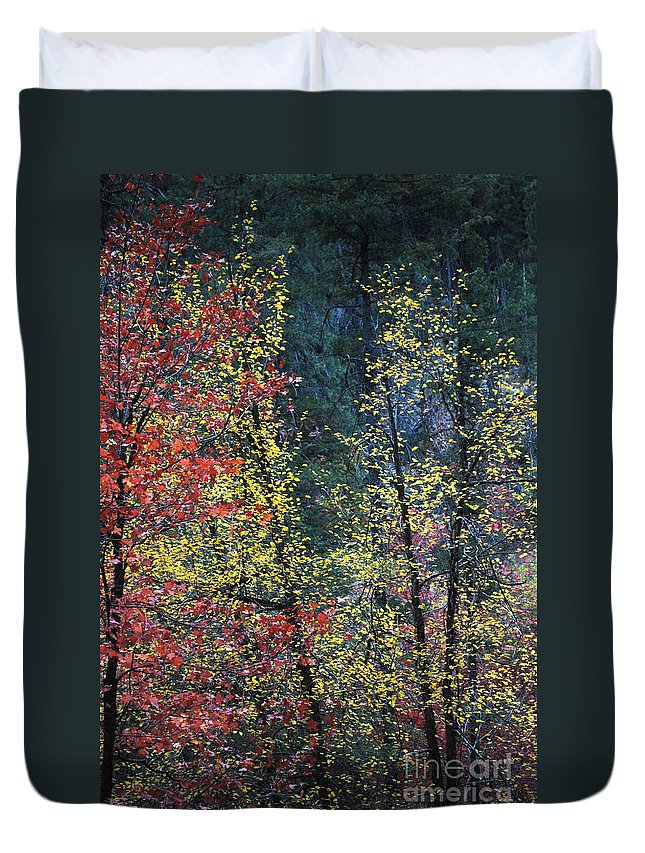 Landscape Duvet Cover featuring the photograph Red And Yellow Leaves Abstract Vertical Number 2 by Heather Kirk