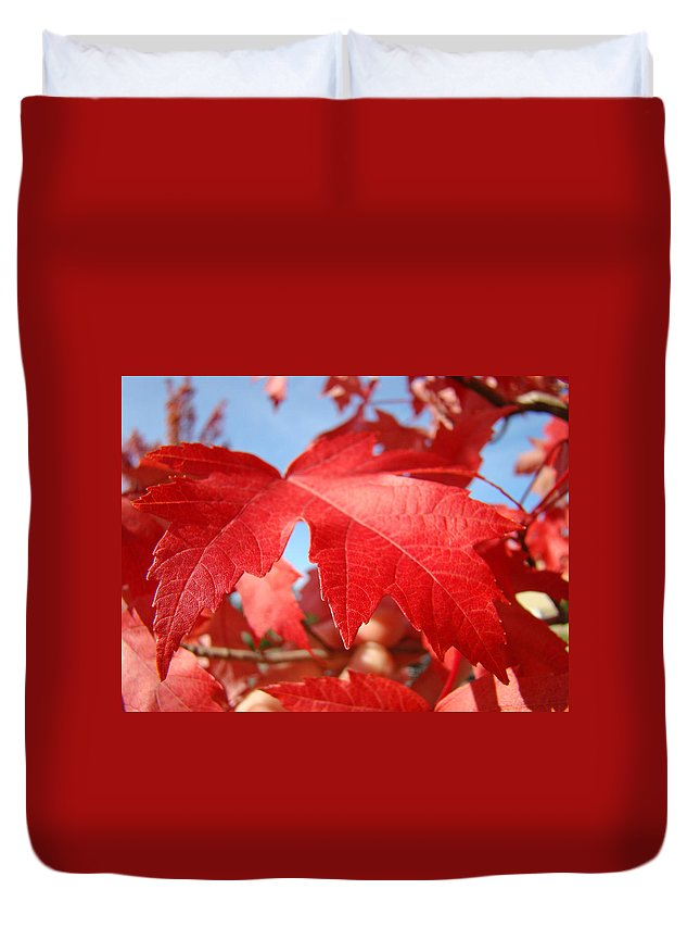 Autumn Duvet Cover featuring the photograph Red Autumn Leaves Fall Art Colorful Autumn Tree Baslee Troutman by Baslee Troutman