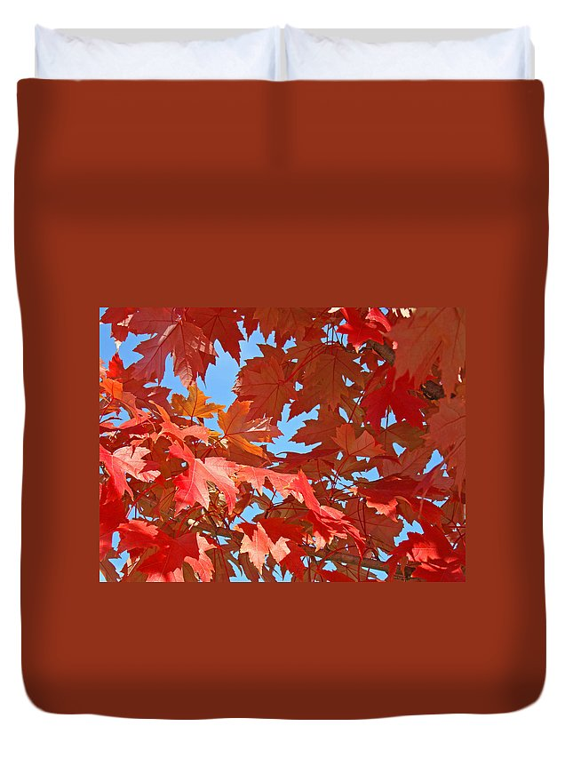 Autumn Duvet Cover featuring the photograph Red Autumn Leaves Fall Colors Art Prints Baslee Troutman by Baslee Troutman