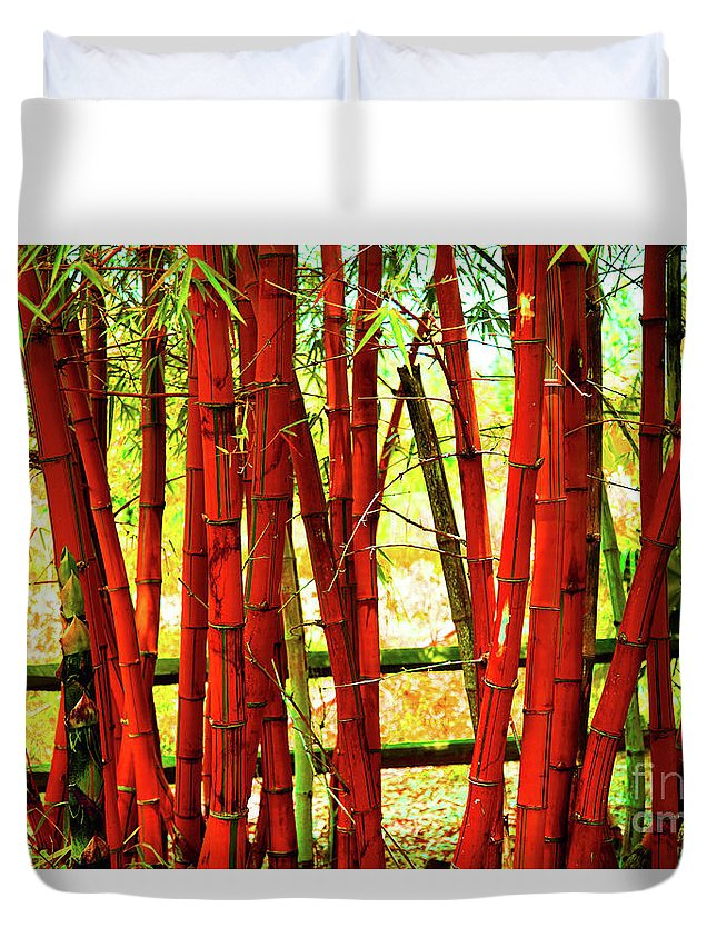 Bamboo Duvet Cover featuring the photograph Red Bamboo by Eluv