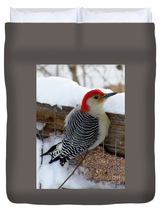 Red Bellied Woodpecker Duvet Cover featuring the photograph Red Bellied Woodpecker 5 by James Seitzinger