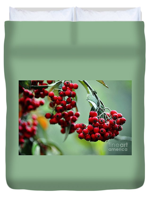 Clay Duvet Cover featuring the photograph Red Berries by Clayton Bruster
