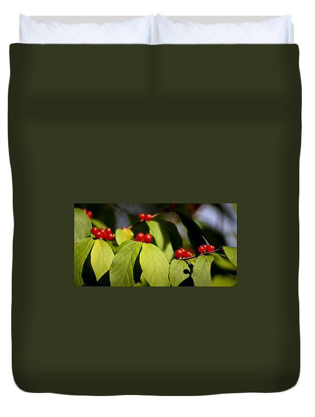 Red Duvet Cover featuring the photograph Red Berries by Teresa Mucha
