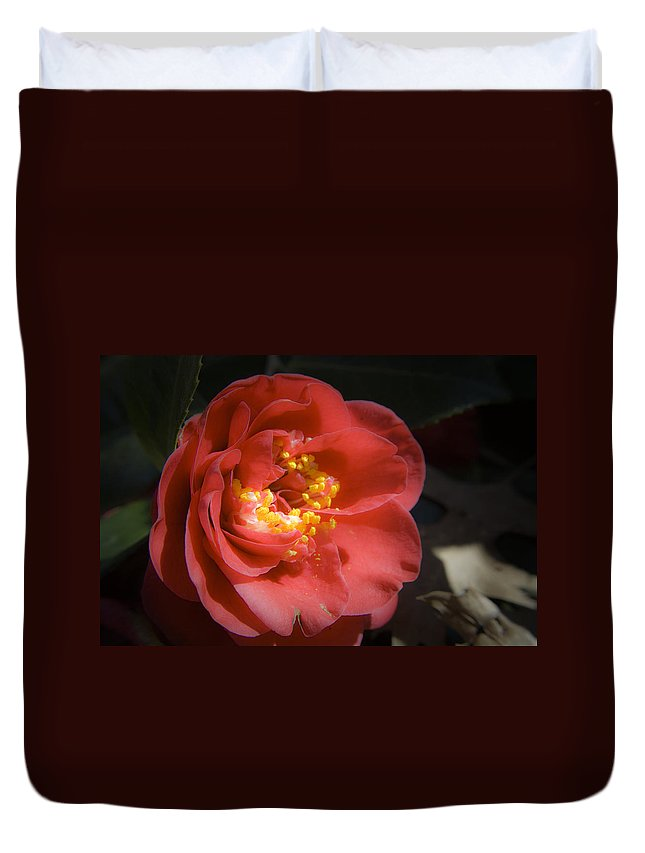 Camellia Duvet Cover featuring the photograph Red Camellia Bloom by Teresa Mucha