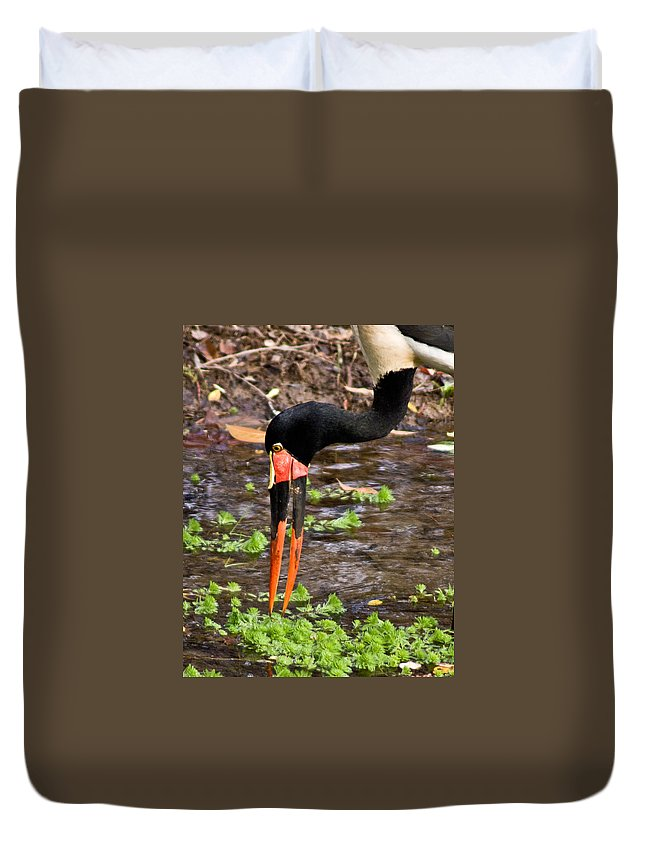 Red Duvet Cover featuring the photograph Red-crowned Crane by Douglas Barnett