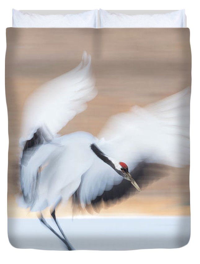 Cranes Duvet Cover featuring the photograph Red Crowned Crane In Kushiro by Yoshiki Nakamura