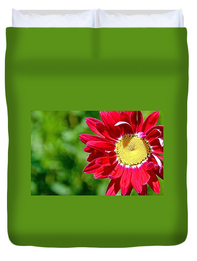 Red Flower Duvet Cover featuring the photograph Red Daisy by Danielle Sigmon