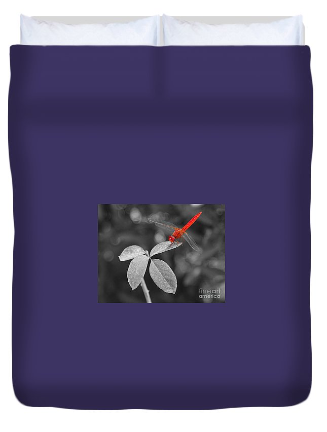 Abdomen Duvet Cover featuring the photograph Red Dragonfly by Joe Ng
