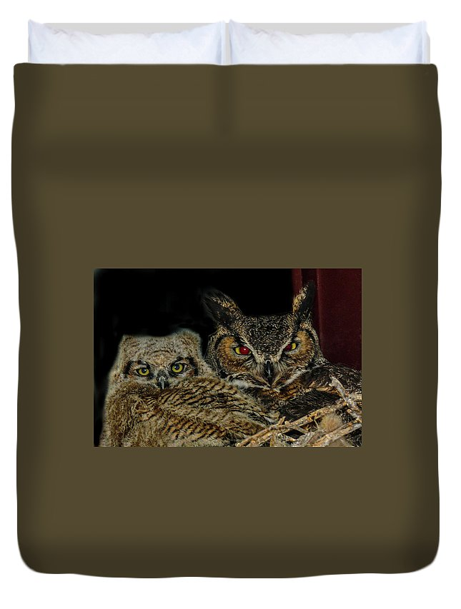 Great Horned Owls Duvet Cover featuring the photograph Red Eyed Mama And Baby Horned Owls by Elizabeth Hershkowitz