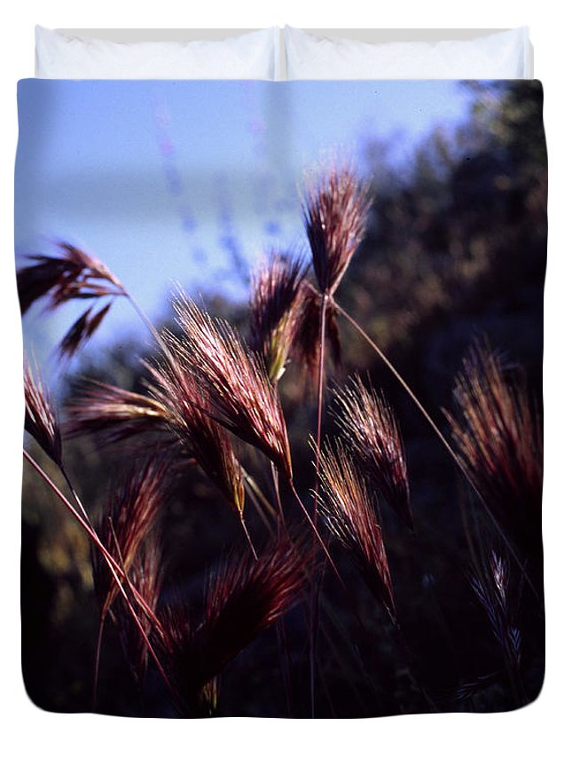 Nature Duvet Cover featuring the photograph Red Feathers by Randy Oberg