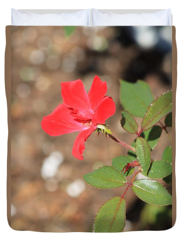 Flower Duvet Cover featuring the photograph Red Flower by Michelle Powell