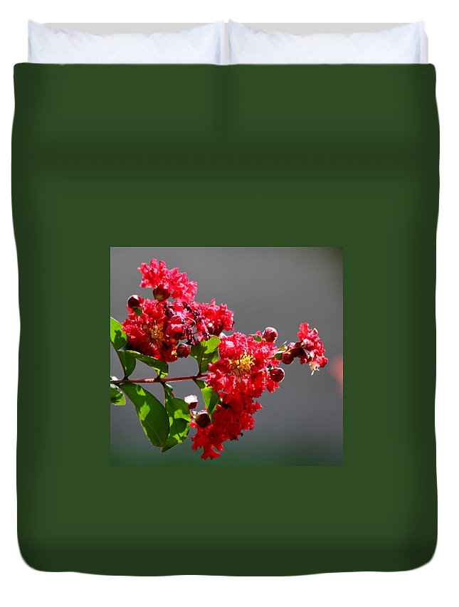 Red Flowers Duvet Cover featuring the photograph Red Flowers After The Rain by Kathy Kirkland