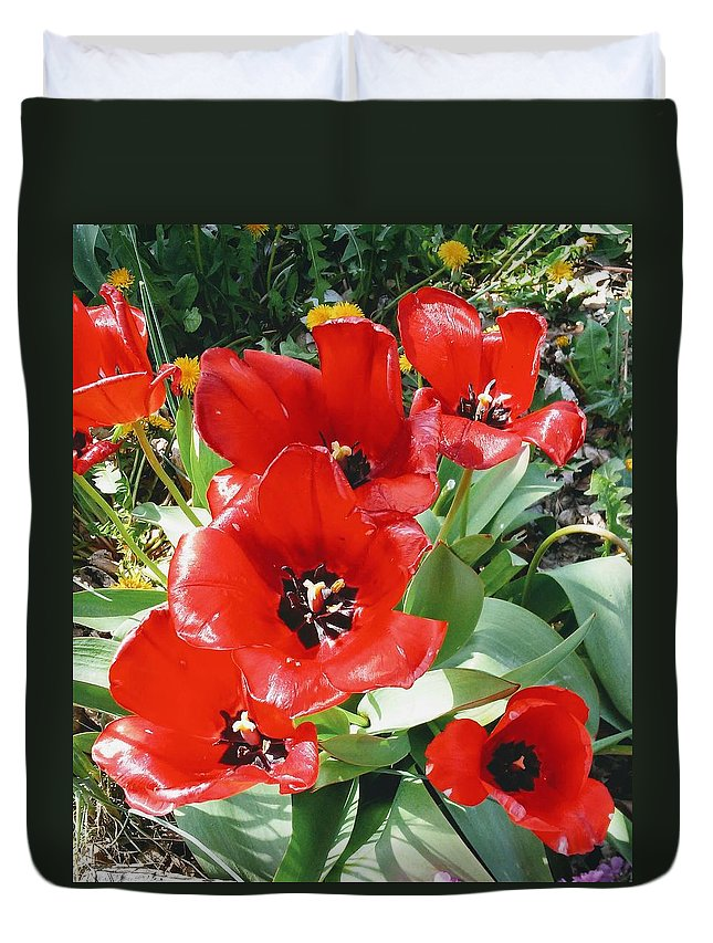 Red Flowers Duvet Cover featuring the photograph Red Flowers by Stacy Layne