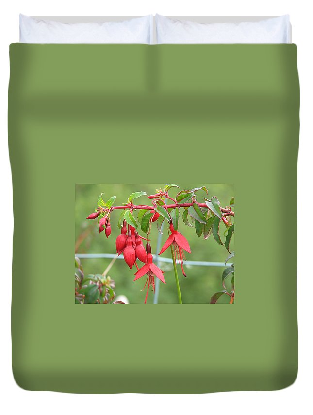 Fresia Duvet Cover featuring the photograph Red Fresia by Kelly Mezzapelle
