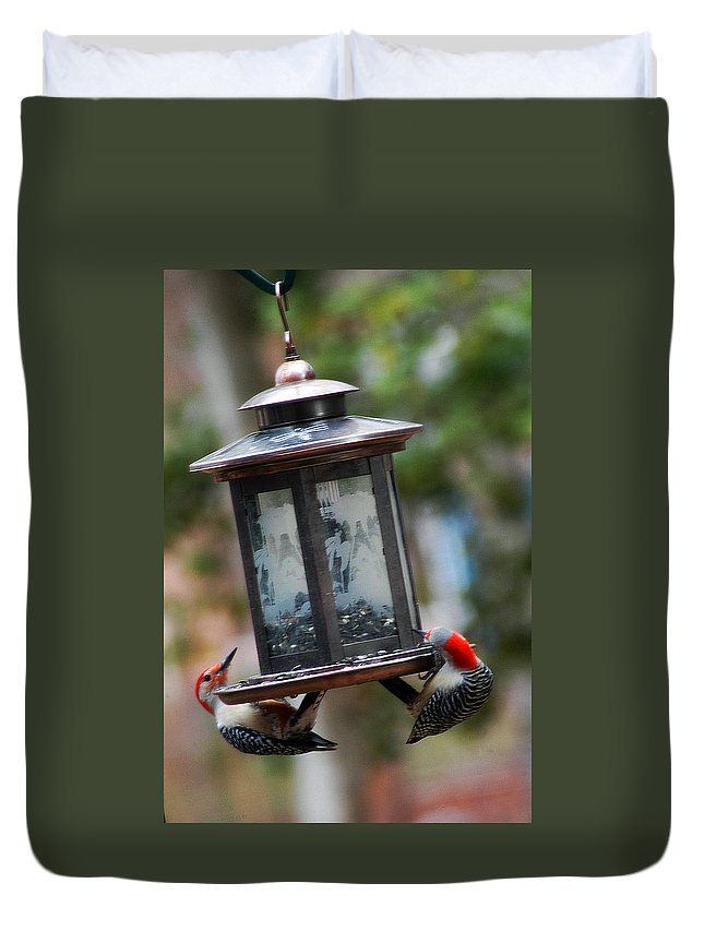 Clay Duvet Cover featuring the photograph Red Head Wood Peckers On Feeder by Clayton Bruster
