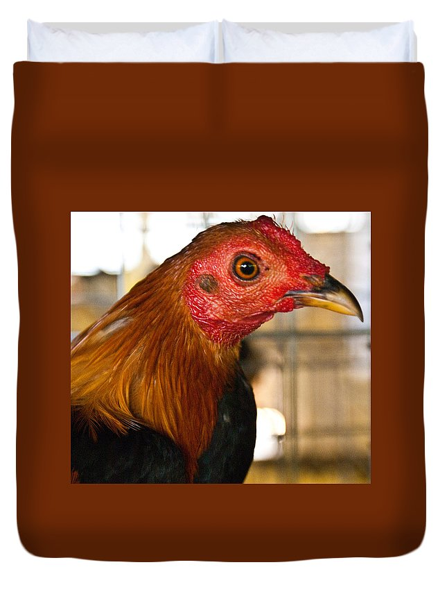 Chicken Duvet Cover featuring the photograph Red Headed Chicken Head by Douglas Barnett