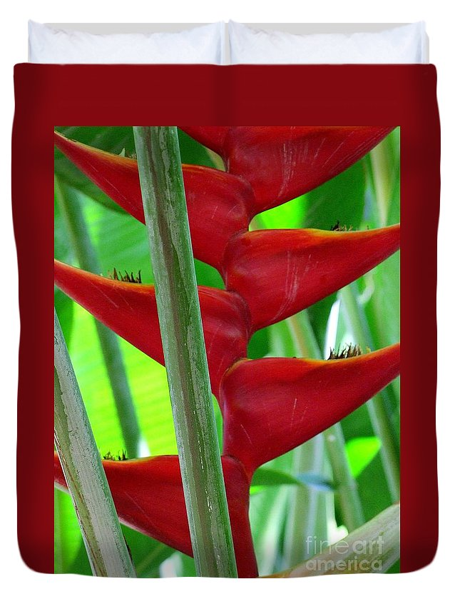 Red Flowers Duvet Cover featuring the photograph Red Heliconia by Mary Deal