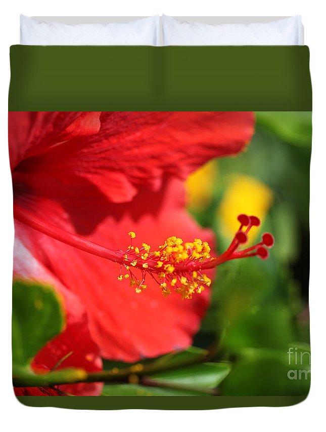 Flowers Duvet Cover featuring the photograph Red Hibiscus And Green by Nadine Rippelmeyer
