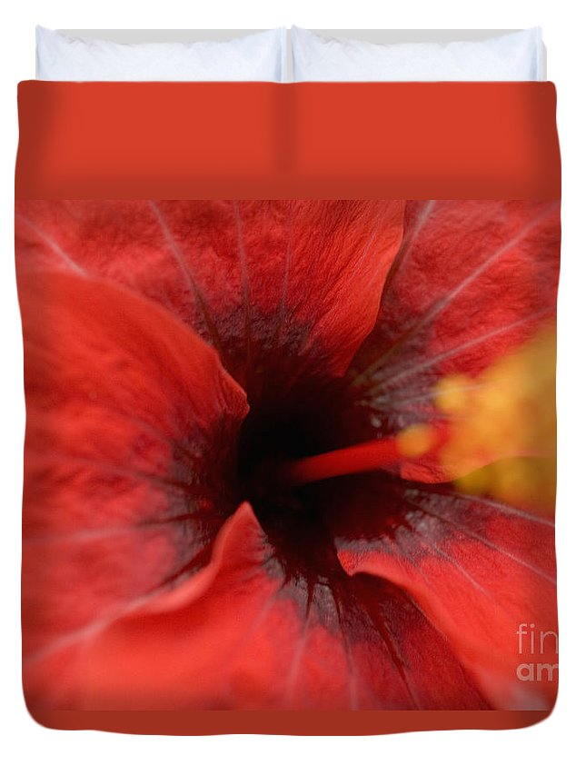 Above Duvet Cover featuring the photograph Red Hibiscus by Tomas del Amo - Printscapes