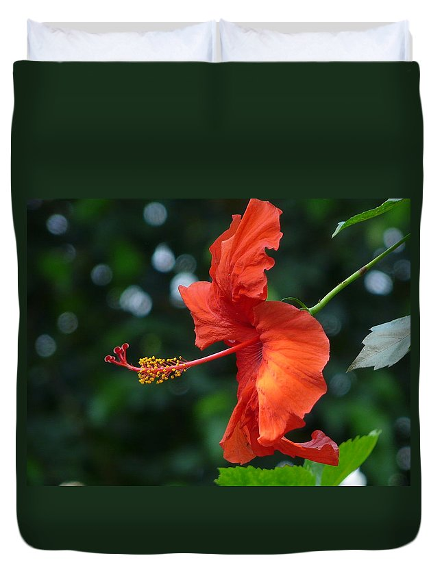 Flower Duvet Cover featuring the photograph Red Hibiscus by Valerie Ornstein