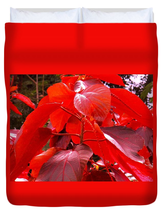 Red Duvet Cover featuring the photograph Red by Ian MacDonald