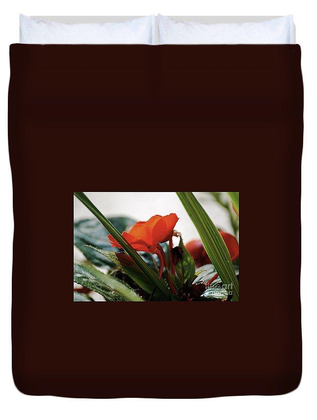 Impatiens Duvet Cover featuring the photograph Red Impatiens by Faith Harron Boudreau