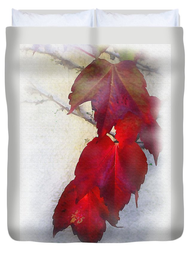 Nature Duvet Cover featuring the photograph Red Leaves by Sharon Foster