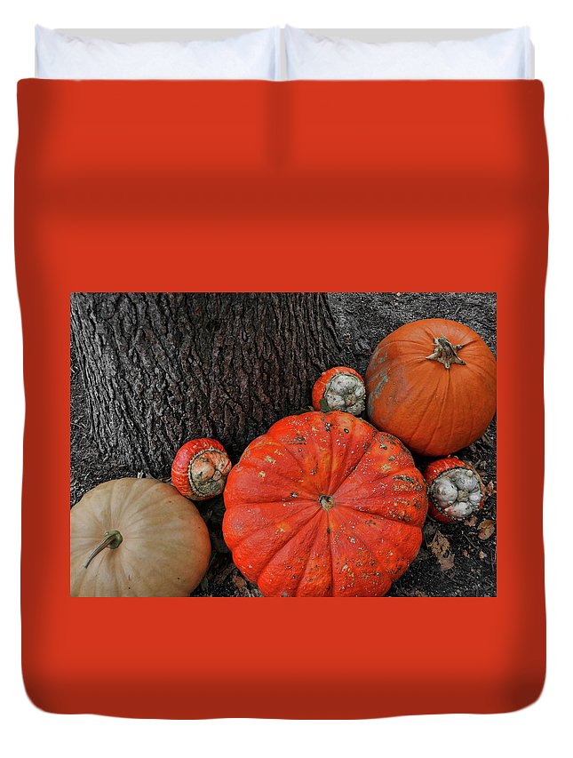 Pumpkin Duvet Cover featuring the photograph Red Orange by JAMART Photography