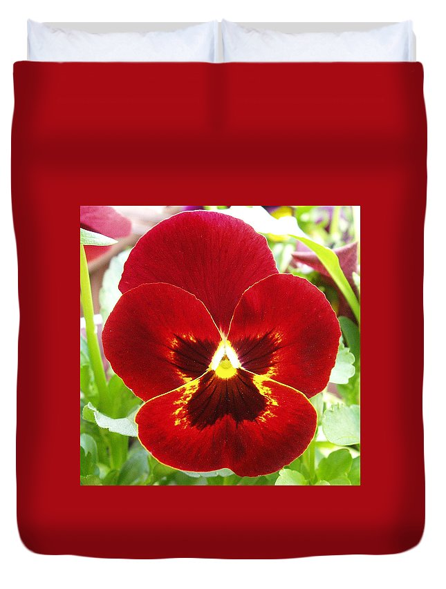 Red Duvet Cover featuring the photograph Red Pansy by Nancy Mueller