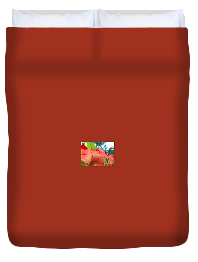 Red Petunia Flower/garden/wildflower/nature/flowers/closeup/reds Duvet Cover featuring the photograph Red Petunia Swirl by Kit Labossiere