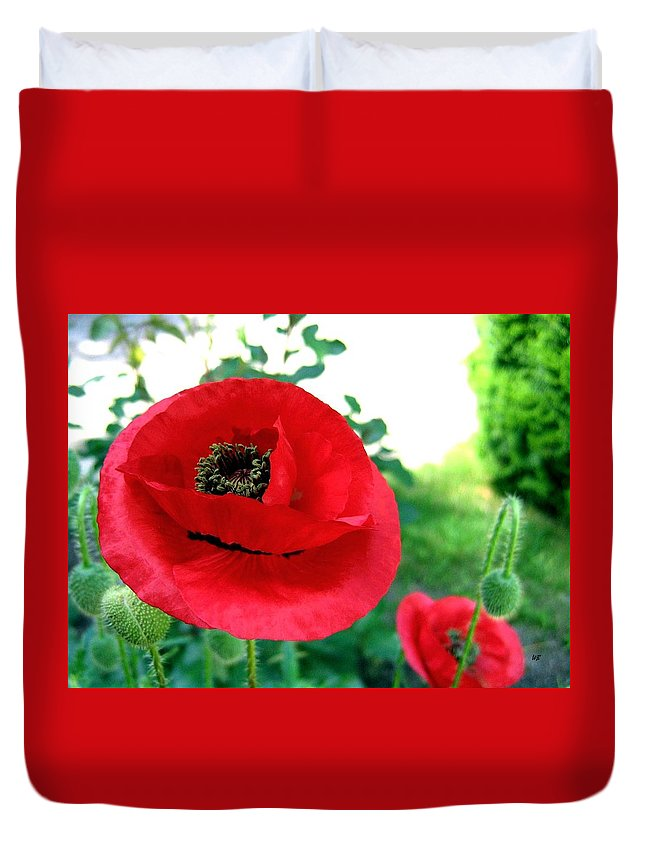 Poppies Duvet Cover featuring the photograph Red Poppies by Will Borden