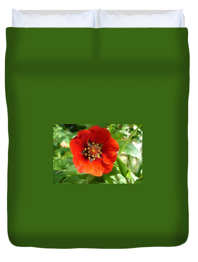 Flora Duvet Cover featuring the photograph Red Red Bloom by Susan Baker