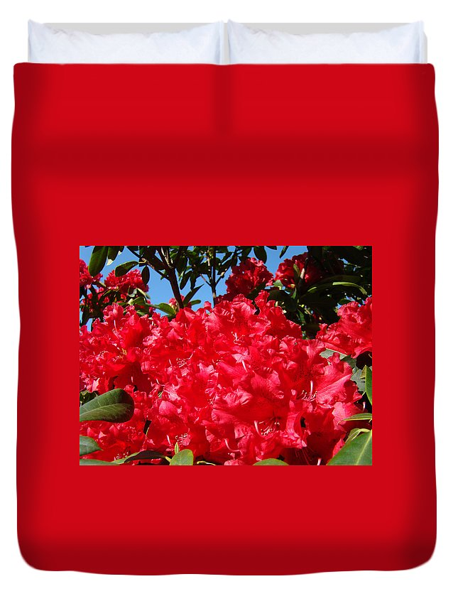 Nature Duvet Cover featuring the photograph Red Rhododendron Flowers Floral Art Prints Baslee by Baslee Troutman