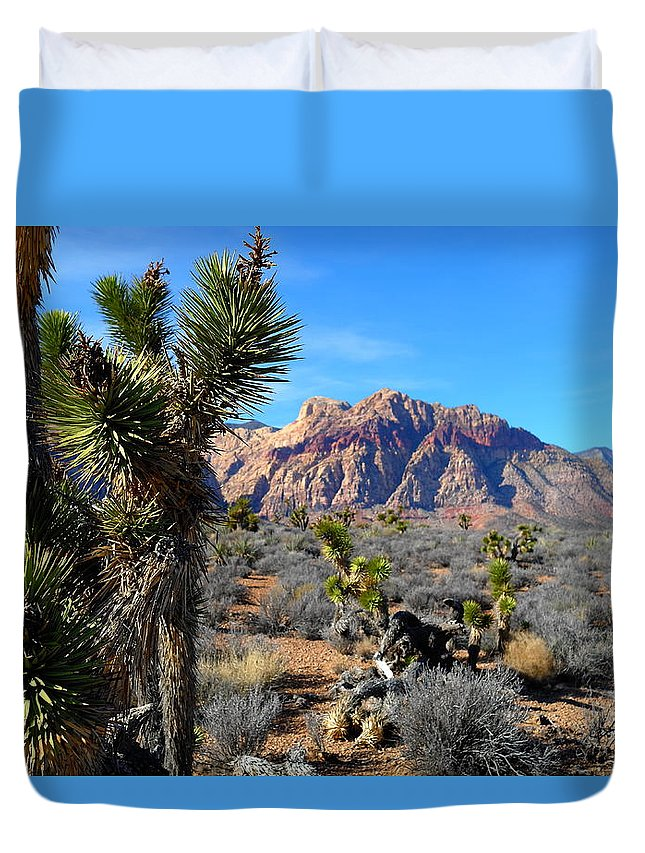 Red Rock Canyon Duvet Cover featuring the photograph Red Rock Canyon Joshua Tree 2 by Arnel Sarmiento