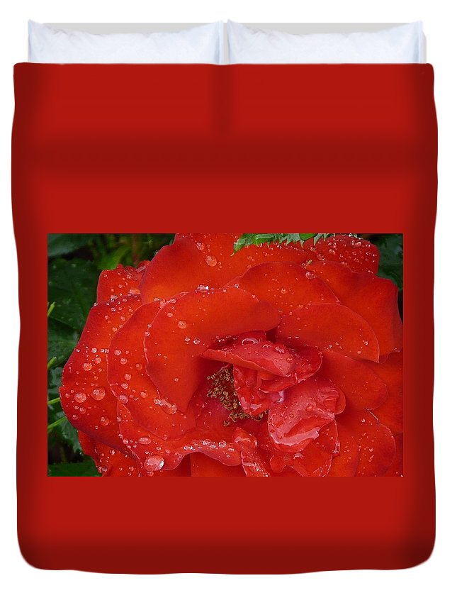 Rose Duvet Cover featuring the photograph Red Rose After Rain by Valerie Ornstein