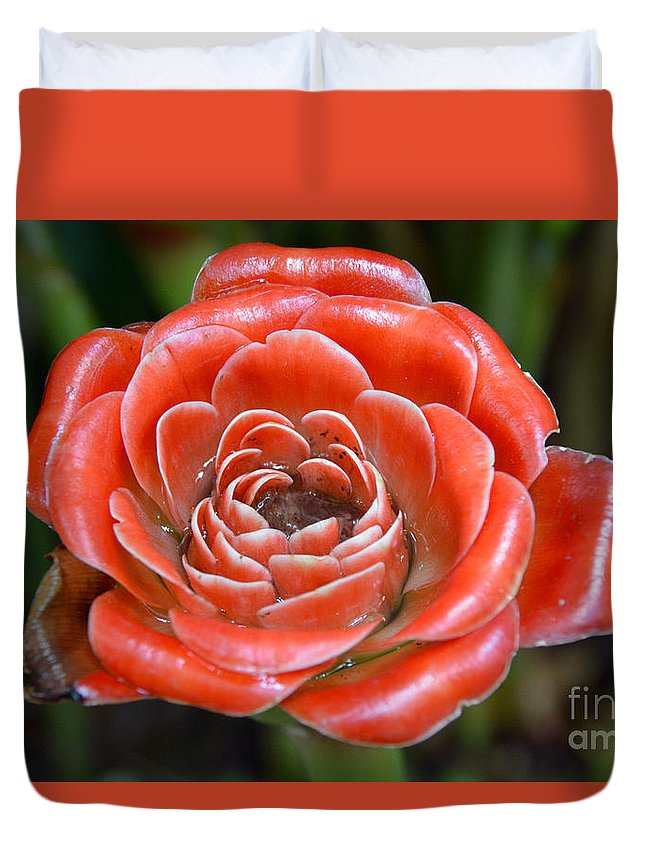 Roses Duvet Cover featuring the tapestry - textile Red Rose by Edna Weber