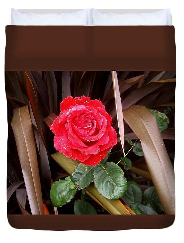 Red Duvet Cover featuring the photograph Red Rose by Ellen Ashworth