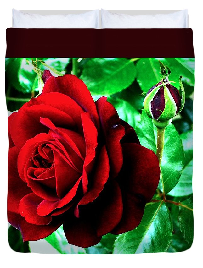 Duvet Cover featuring the photograph red Rose by Helmut Rottler