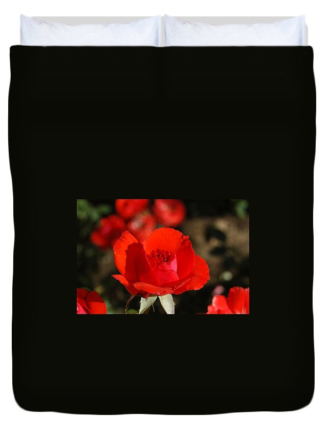 Red Duvet Cover featuring the photograph Red Rosebud Opening by Teresa Stallings