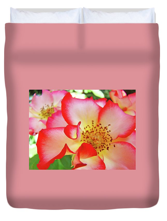 Rose Duvet Cover featuring the photograph Red Roses White Yellow Rose Flower Floral Art Print Baslee Troutman by Baslee Troutman