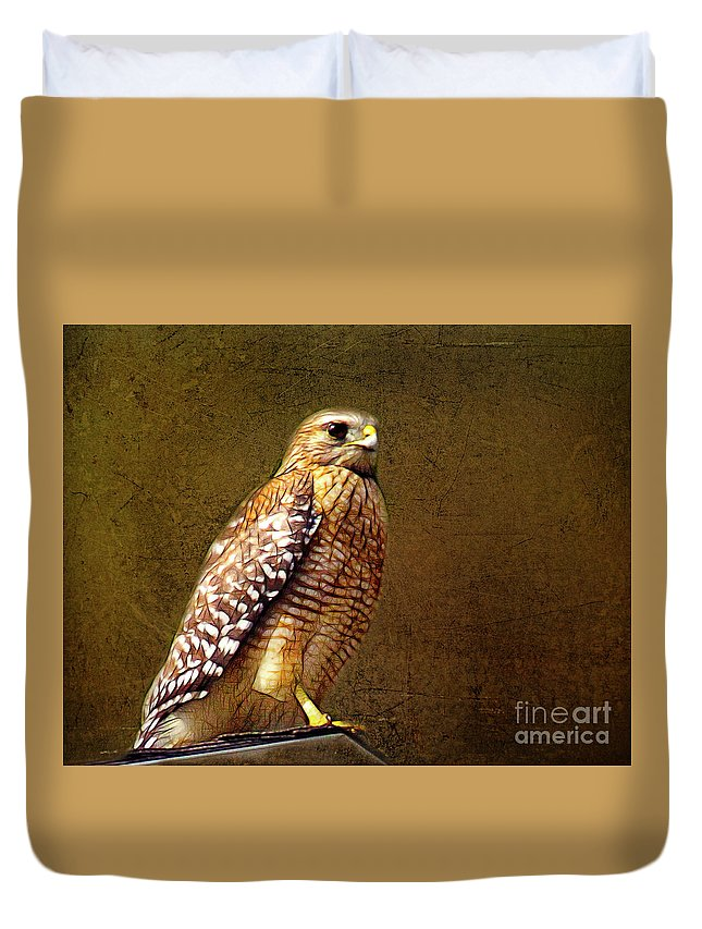 Hawk Duvet Cover featuring the photograph Red-shouldered Hawk by Judi Bagwell