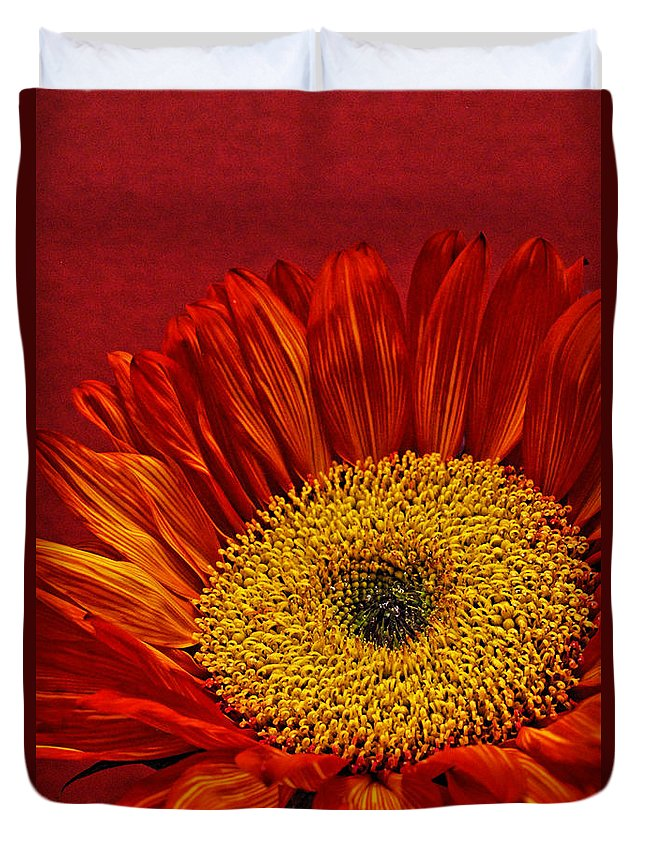 Red Sunflower Duvet Cover featuring the photograph Red Sunflower Viii by Saija Lehtonen