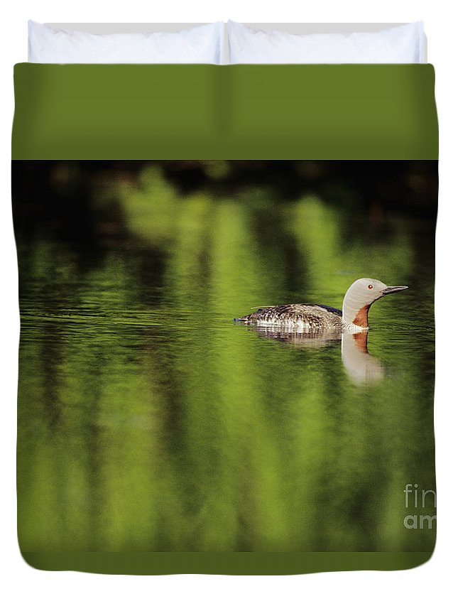 Alaska Duvet Cover featuring the photograph Red Throated Loon by John Hyde - Printscapes