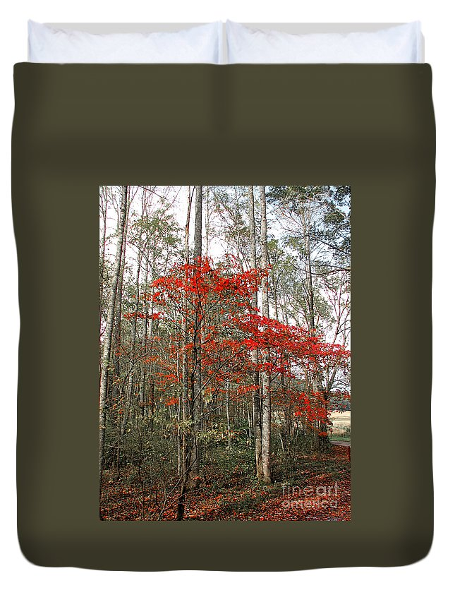 Landscape Duvet Cover featuring the photograph Red Tree by Todd Blanchard