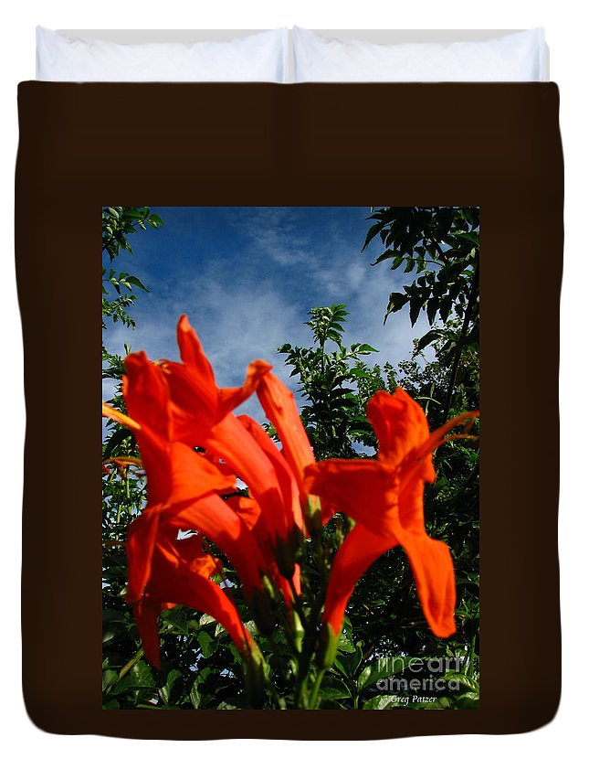 Patzer Duvet Cover featuring the photograph Red Trumpeter by Greg Patzer