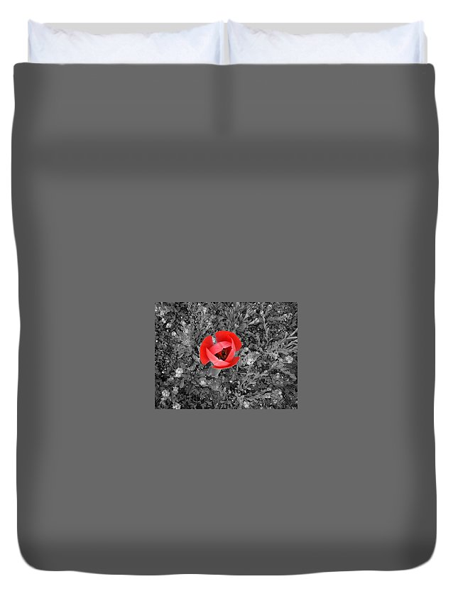 Red Tulip Photography Duvet Cover featuring the photograph Red Tulip From Above by Georgeta Blanaru