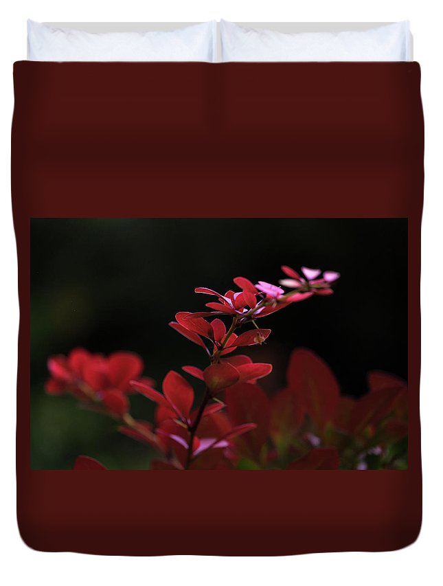 Natalya Antropova Duvet Cover featuring the photograph Red Twilight by Natalya Antropova