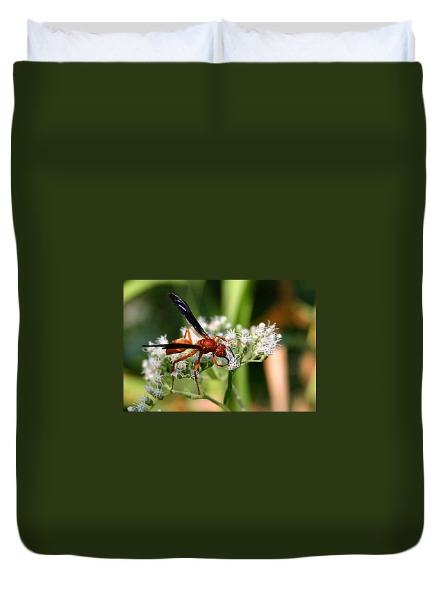 Wasp Duvet Cover featuring the photograph Red Wasp On Lace by Kristin Elmquist