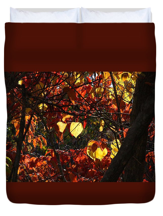 Redbud Duvet Cover featuring the photograph Redbud by Kathryn Meyer